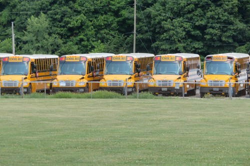 LCS Buses